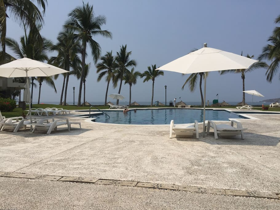 wonderful pool in front of the Palm beach