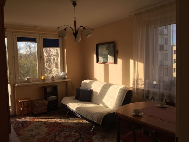 Apartment in the heart of Gdansk-Sopot-Gdynia. - Gdańsk - Daire