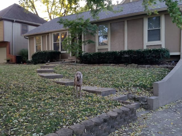 Cozy home with great atmosphere. Centrally located