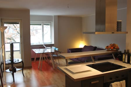 Cosy room in spacious appartement