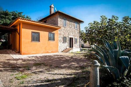 Casa Carizia in the olive grove - Sezze - 住宿加早餐