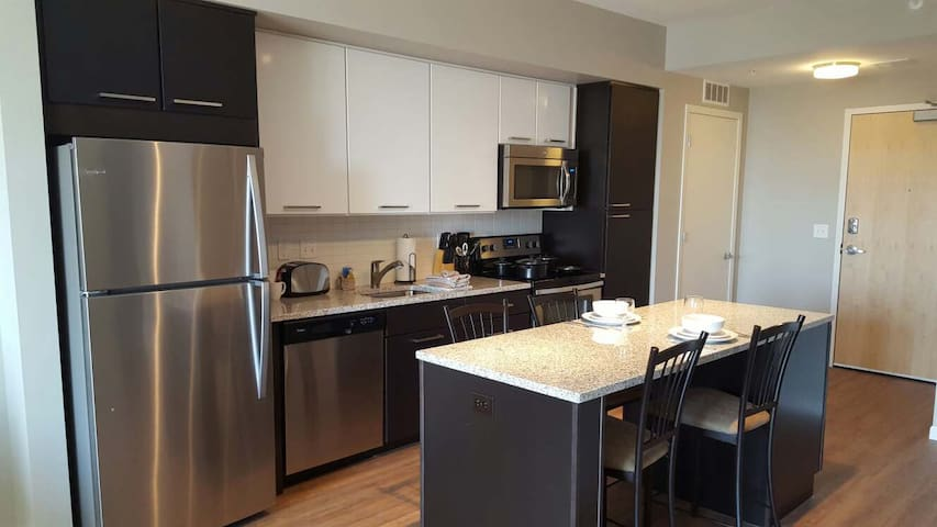 New Luxury 1bd in Minneapolis - Minneapolis - Apartamento