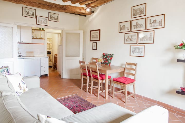 Lucca Walls' dream! Apartment with WiFi, parking.