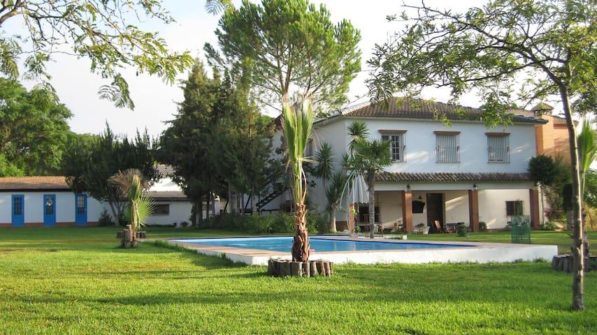 Cortijo Andaluz Finca CerrosBravo  - Aznalcázar - Casa