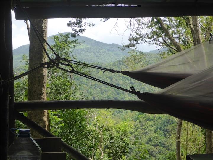 L'expérience d'une nuit au Hamac Camp Guadeloupe