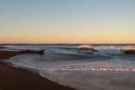Ocean Shores Condo Rentals #201/208 - 海岸市(Ocean Shores)