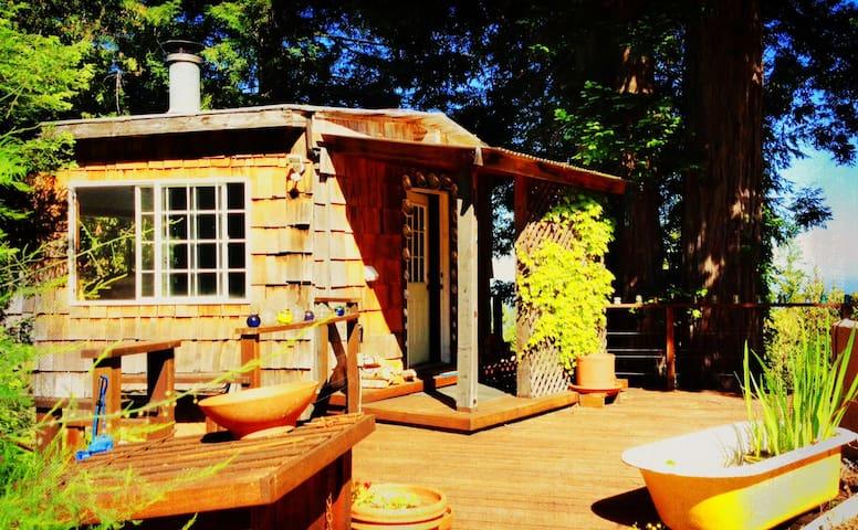 Abalone Cottage - Forested Charm, Super Hosts! - Elk - Hytte