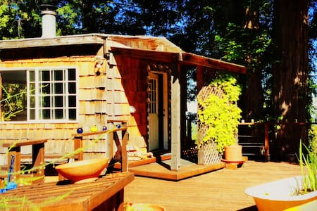 Abalone Cottage - Forested Charm, Super Hosts! - Elk - Cabana