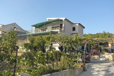 Apartment Katica (13401-A3) - Skradin - Apartemen