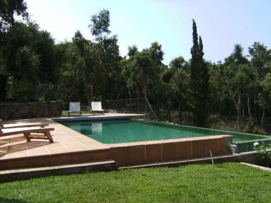 Villa lyon with swimming pool indoor whirlpool villas for Pool show lyon