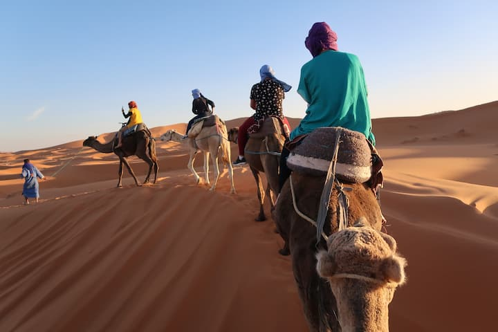 Berber Nomad Camp in Sahara Desert+Activities