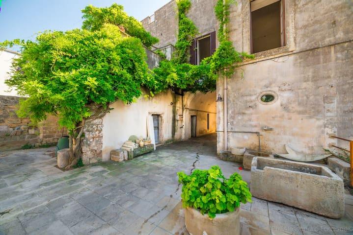 Palazzo del 600' a Magliano - Magliano - Appartement