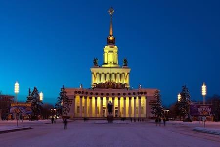 Квартира НА НОЧЬ (не сутки) - Москва - Bed & Breakfast