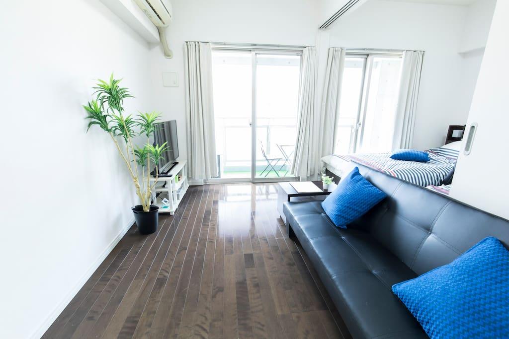 sunny spacious room