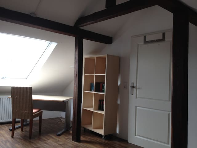 Calm and well located loft apartment in Karlsruhe - Karlsruhe - Apartment