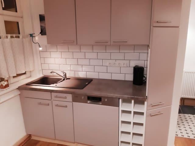 Apartment-3 Zimmer mit großer Wohnküche (ca. 85m²)