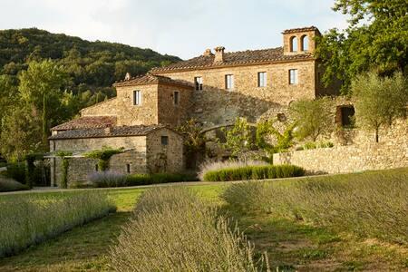 Gorgeous villa with pool close to Montalcino - Montalcino - Willa