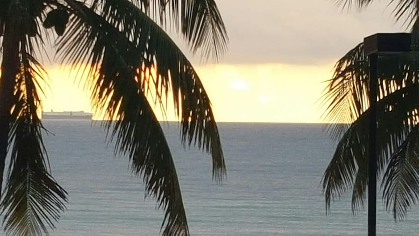 Tranquil Hollywood Beach - Hollywood - Bed & Breakfast