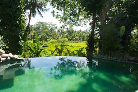 Enchanting Villa * Amazing View * Stunning Service - Ubud - Villa