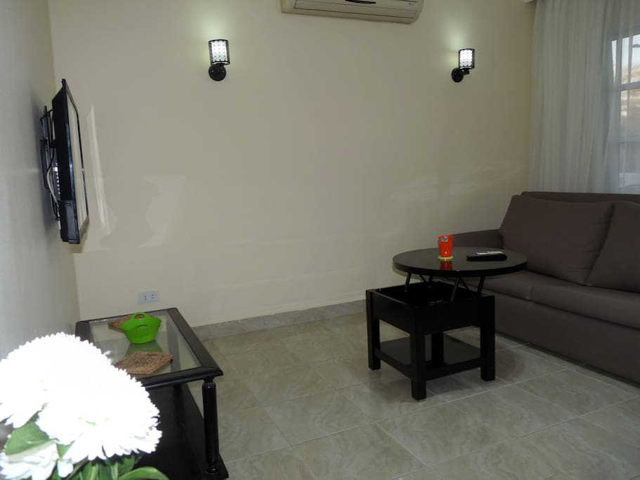Reception with Sofa Bed and Wall Mounted Flat Screen OSN Cable TV