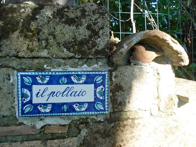 cottage Il pollaio vicino Roma e VT