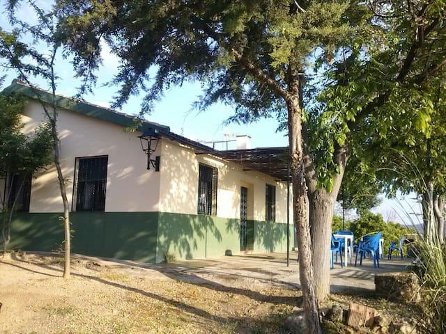Casa de Campo de Colmena - Hornachuelos - Ev