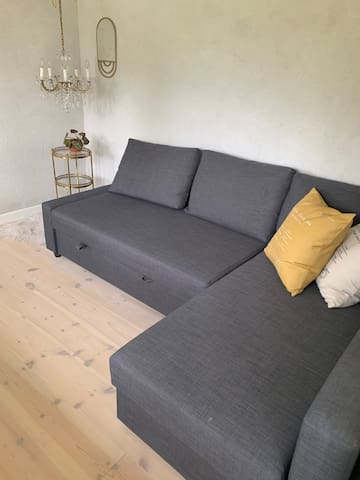 Guest room with sofa bed. Sleeps 2