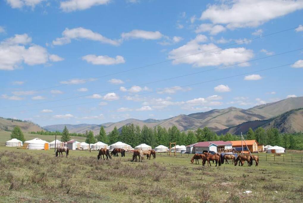 숙박과 함께 승마여행을 할수 있는 전문 승마여행 캠프