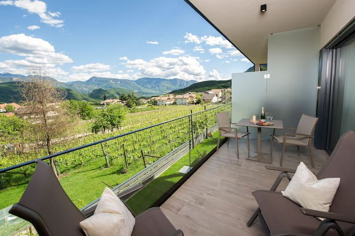 "Modern Apartment ""App. Merlot"" with Mountain View, Wi-Fi, Garden, Pool, Sauna & Jacuzzi; Parking Available"