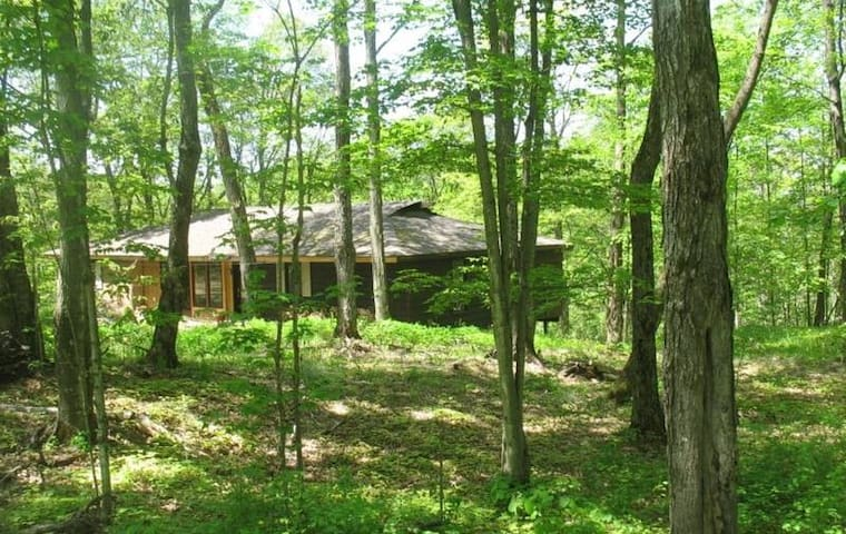 Maple Abour - Haliburton - House