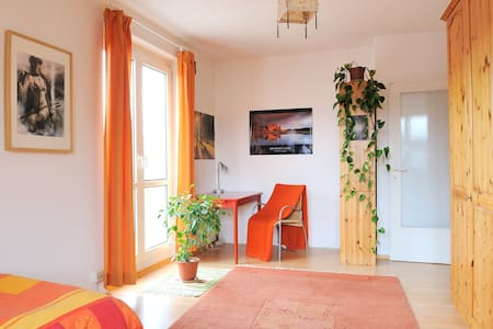 Cosy and bright studio flat in the center of Linz - Linz - Huoneisto