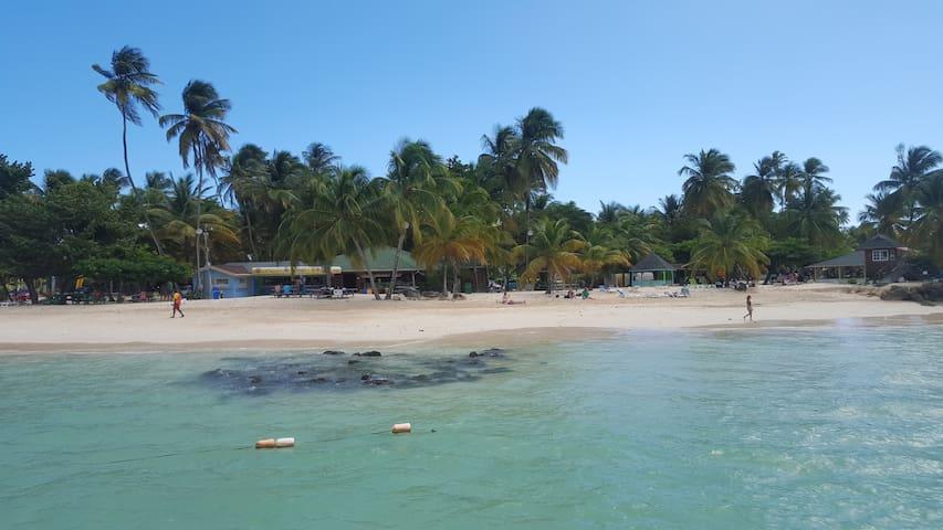 tropical serenity + English lessons - Gasparillo - Hus