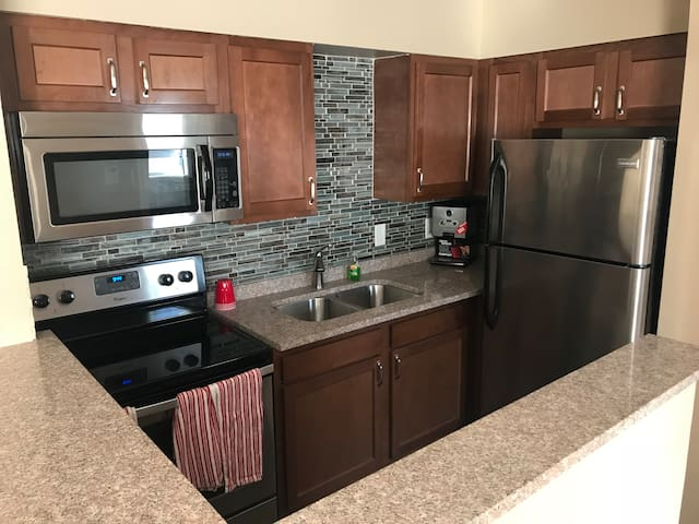 Newly Renovated Downtown Royal Oak Apartment 102b