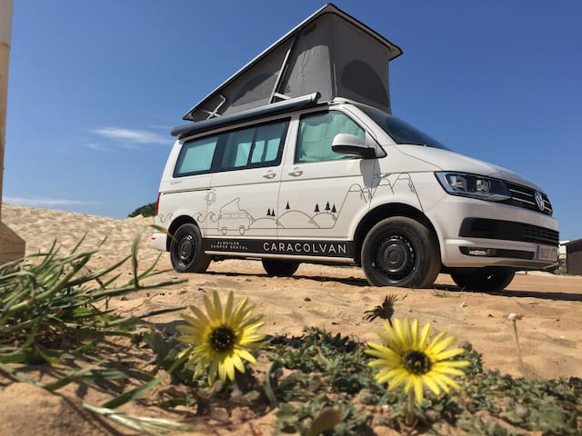 Vw T6 California Camper-van for enjoy Tarifa