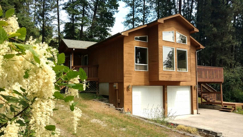 Quiet Forest Setting: Whole House Rental -Lakeview