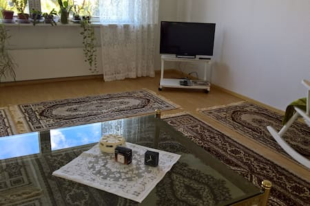 Appartment near City Center in Kouvola - Kouvola