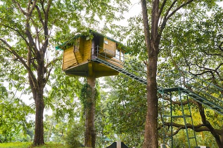 Cosy tree house stay with a spectacular view - Manikandanchal - 树屋