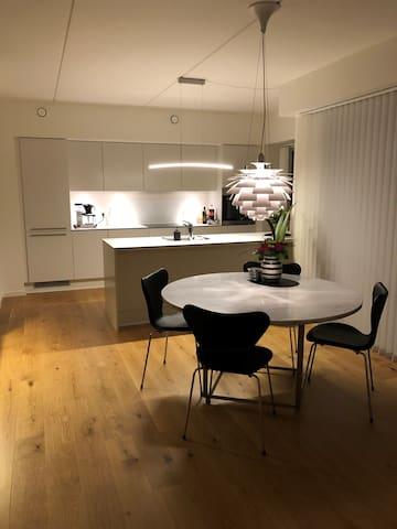 New apartment next to lake and Skanderborg Center