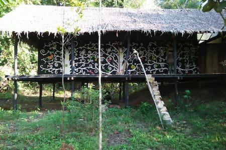 Rooms in jungle beach area #2