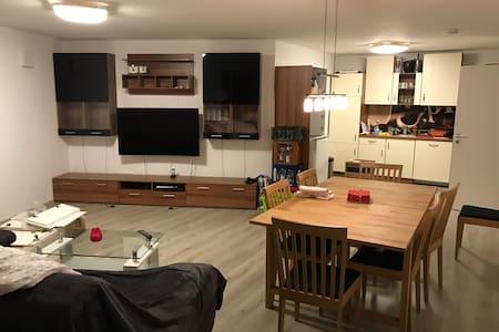 2 Zimmer Wohnung in Bielefeld 60m2 - Bielefeld