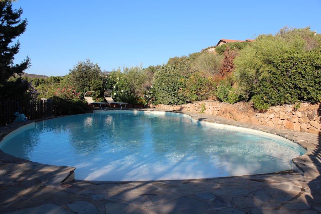 Villa con piscina last minute 18 28 7 case in affitto a - Casa vacanza con piscina ad uso esclusivo ...