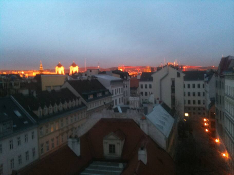A room with a view in Vienna.