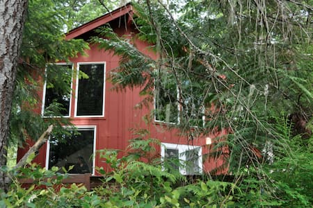 Cinnamon Bear Cabin near Olympic National Park