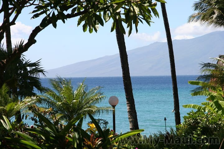 Ocean Front Luxury Condo, free WIFI, Kuleana - Lahaina - Appartement