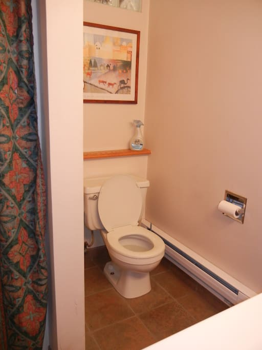 If you're from California, you'll be glade to find this water saving toilet, and ample room around.