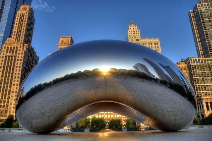 Wonderful 1br right by Millennium Park - Chicago - Huoneisto