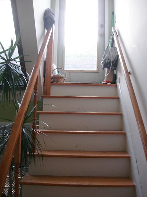 just above your bed are the stairs to the roof terrace