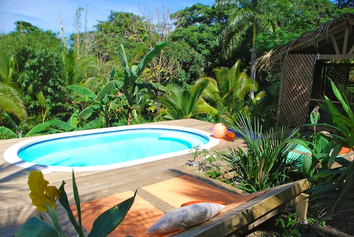 Just a few steps away from the Tree House: the pool!
