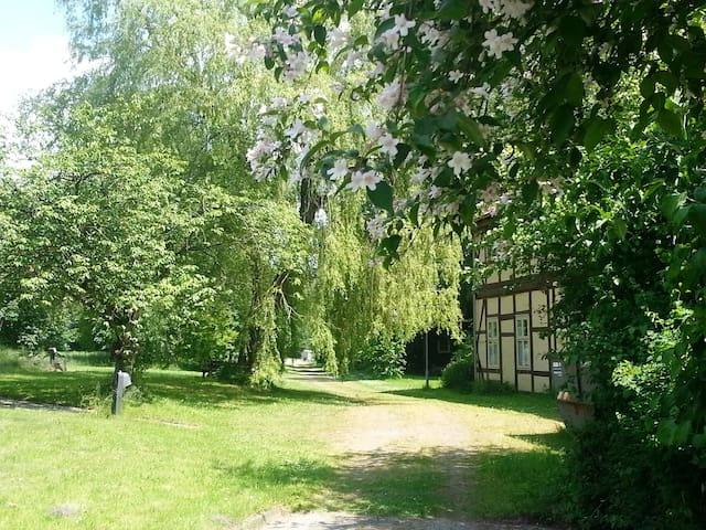 Gästezimmer gegenüber dem Jagdschloss - Göhrde - Cabaña en la naturaleza