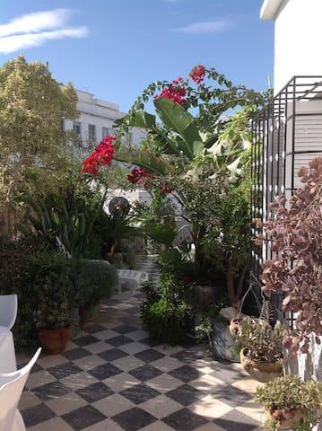 LA CASA DEL CENTRO A TUNIS